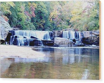 Riley Moore Falls Oconee County Sc Wood Print by Lane Owen