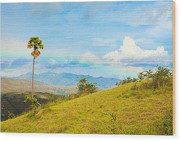 Rinca Island. Wood Print by MotHaiBaPhoto Prints