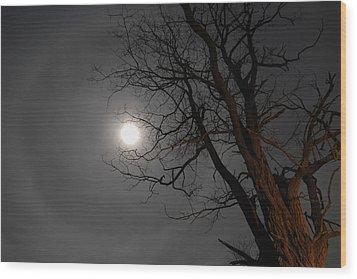 Ring Around Moon Wood Print by Alan Lenk