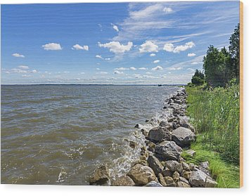 Wood Print featuring the photograph Rip-rap On The Chester River by Charles Kraus