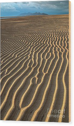 Ripples In Late Sunlight Wood Print by Spencer Baugh