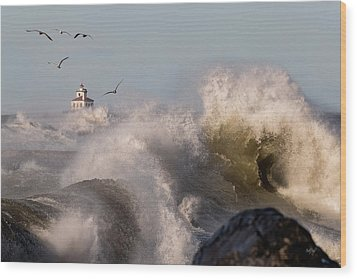 Wood Print featuring the photograph Rise Above The Turbulence by Everet Regal