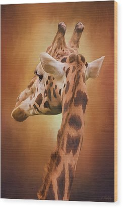 Rising Above - Giraffe Art Wood Print by Jordan Blackstone