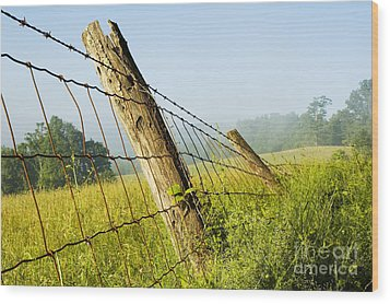 Rising Mist With Falling Fence Wood Print by Thomas R Fletcher