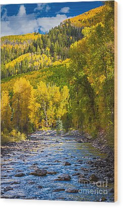 River And Aspens Wood Print by Inge Johnsson