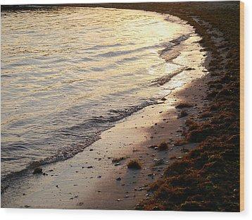 River Beach Wood Print