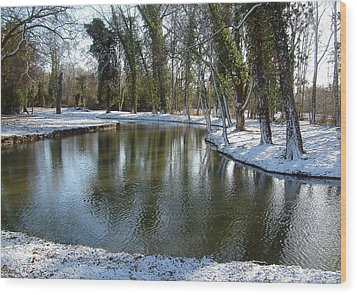 River Cherwell Meandering Through Christ Church Meadows Oxford Uk. Wood Print by Mike Lester