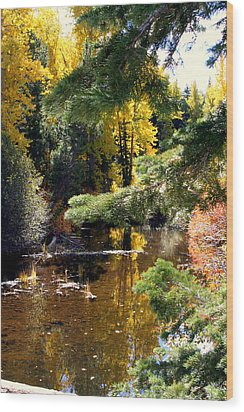 Wood Print featuring the photograph River Colors by Lynn Bawden