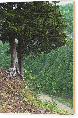 River Down Below Wood Print