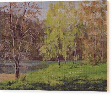 River Forks Spring 2 Wood Print