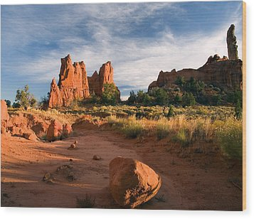 River Of Sand Wood Print by Mike  Dawson