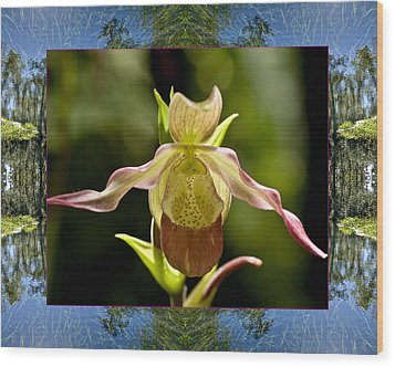 Wood Print featuring the photograph River Orchid by Bell And Todd