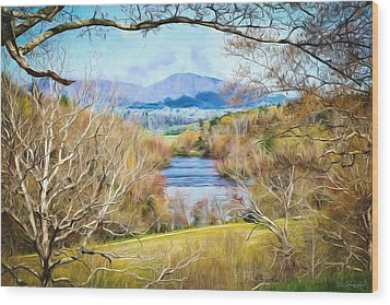 River Overlook Wood Print