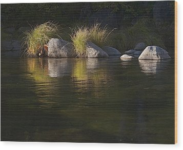 Wood Print featuring the photograph River Rocks And Grass by Larry Darnell