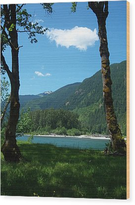 River Shade Wood Print by Ken Day
