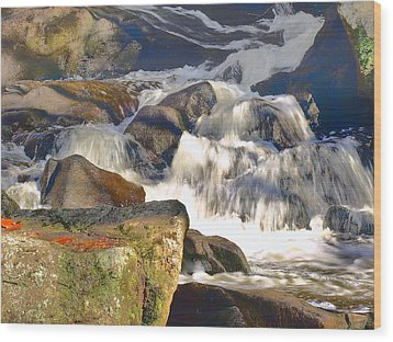 Wood Print featuring the photograph River Wild by Raymond Earley
