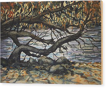 River Willow 2 Wood Print