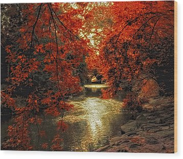 Riverbank Red Wood Print by Jessica Jenney