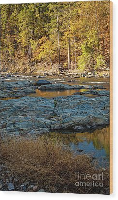 Wood Print featuring the photograph Riverside by Iris Greenwell