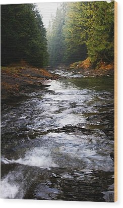 Wood Print featuring the photograph Rivulet by Votus