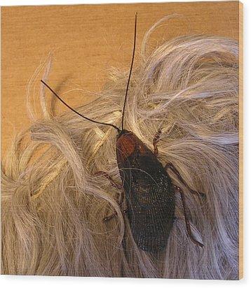 Roach Hair Clip Wood Print by Roger Swezey