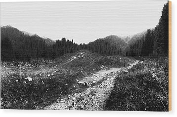 Wood Print featuring the photograph Road by Hayato Matsumoto