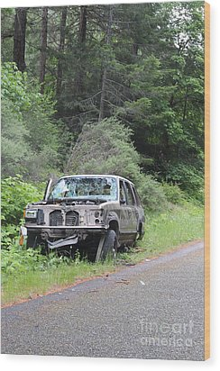 Wood Print featuring the photograph Road Kill by Marie Neder