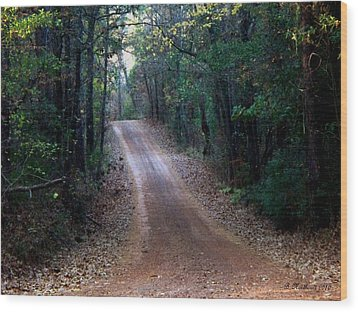 Wood Print featuring the photograph Road Not Taken by Betty Northcutt