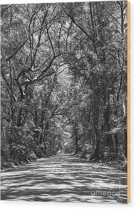 Road To Angel Oak Grayscale Wood Print