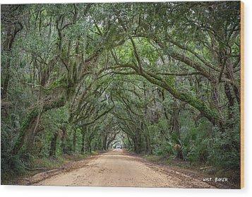 Road To Botany Bay Wood Print