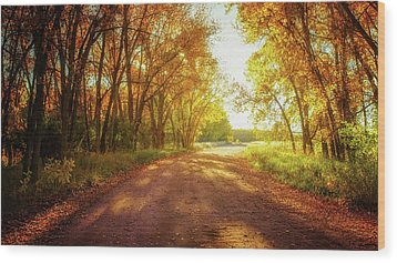 Wood Print featuring the photograph Road To Eternity by John De Bord