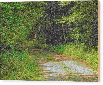 Road To Heaven Wood Print by Michael Degenhardt