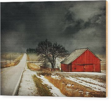 Wood Print featuring the photograph Road To Nowhere by Julie Hamilton