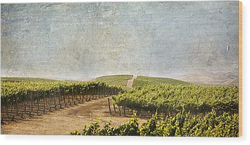 Road To Riches Wood Print by Marilyn Hunt