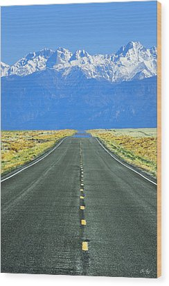 Road To The Sangre De Cristo Mountains Wood Print by Aaron Spong