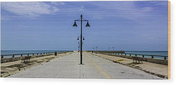 Wood Print featuring the photograph Road To The Sea by Paula Porterfield-Izzo