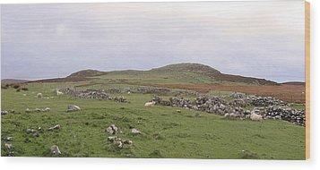 Road To Waternish Point Wood Print by Dan Andersson
