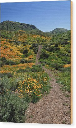 Wood Print featuring the photograph Roadside Flowers by Cliff Wassmann
