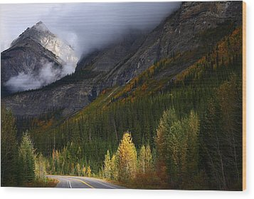 Roadside Landscape At Banff National Park Wood Print by Jetson Nguyen