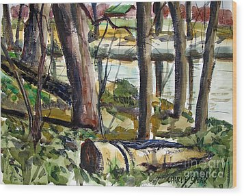 Wood Print featuring the painting Roadside Park Along The Wabash River by Charlie Spear