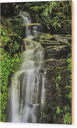 Roadside Waterfall Wood Print