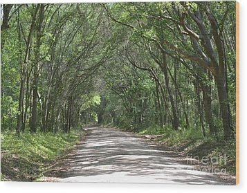Wood Print featuring the photograph Roadway To Mitchellville Beach by Carol  Bradley