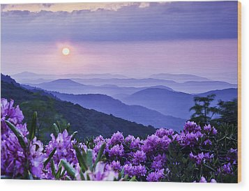 Roan Mountain Sunset Wood Print by Rob Travis