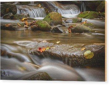 Roaring Fork Stream Great Smoky Mountains Wood Print by Steve Gadomski
