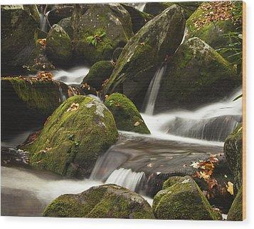 Roaring Fork Waterfall Wood Print by Andrew Soundarajan