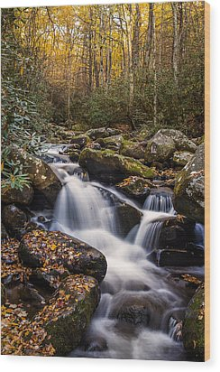 Roaring Fork Waterfall At Autumn Wood Print by Andrew Soundarajan