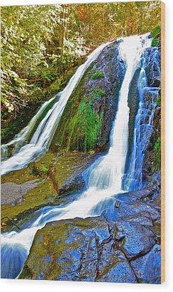 Roaring Run Falls State Park Virginia Wood Print by The American Shutterbug Society