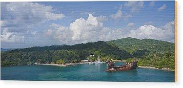 Roatan Shipwreck Wood Print by Ryan Heffron