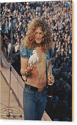 Robert Plant Of Led Zeppelin Wood Print
