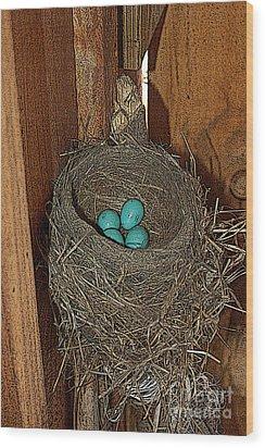 Robin Blue Wood Print by Diane E Berry